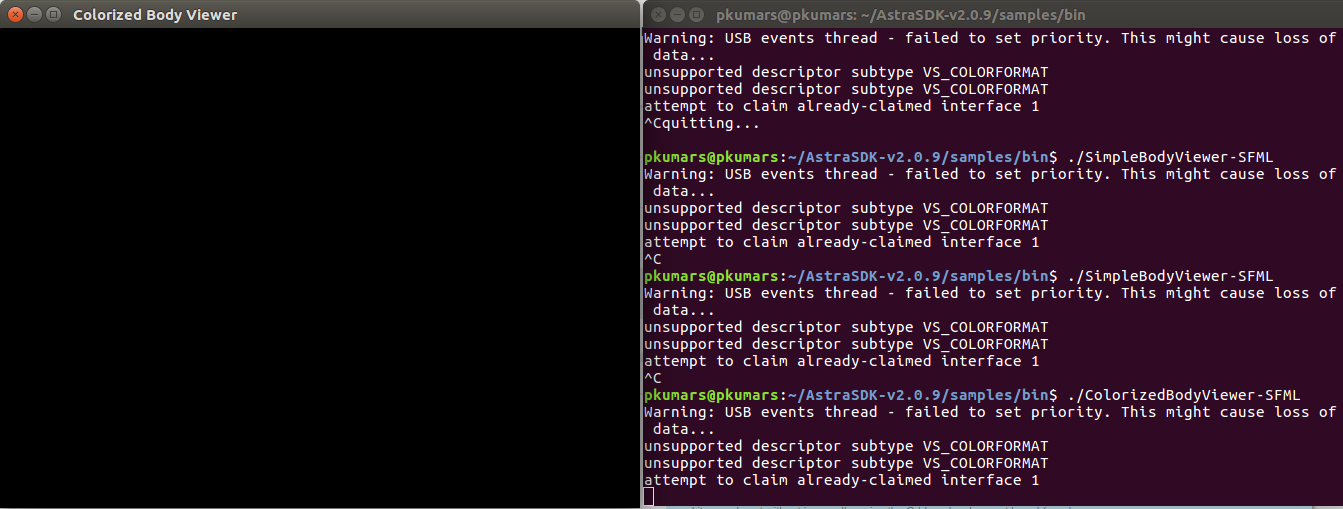 Black Screen When Running SimpleBodyViewer-SFML - Getting Started